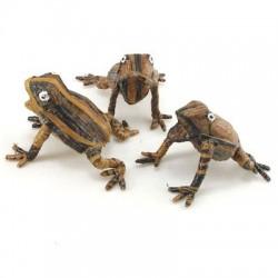 Frog - Banana Fiber